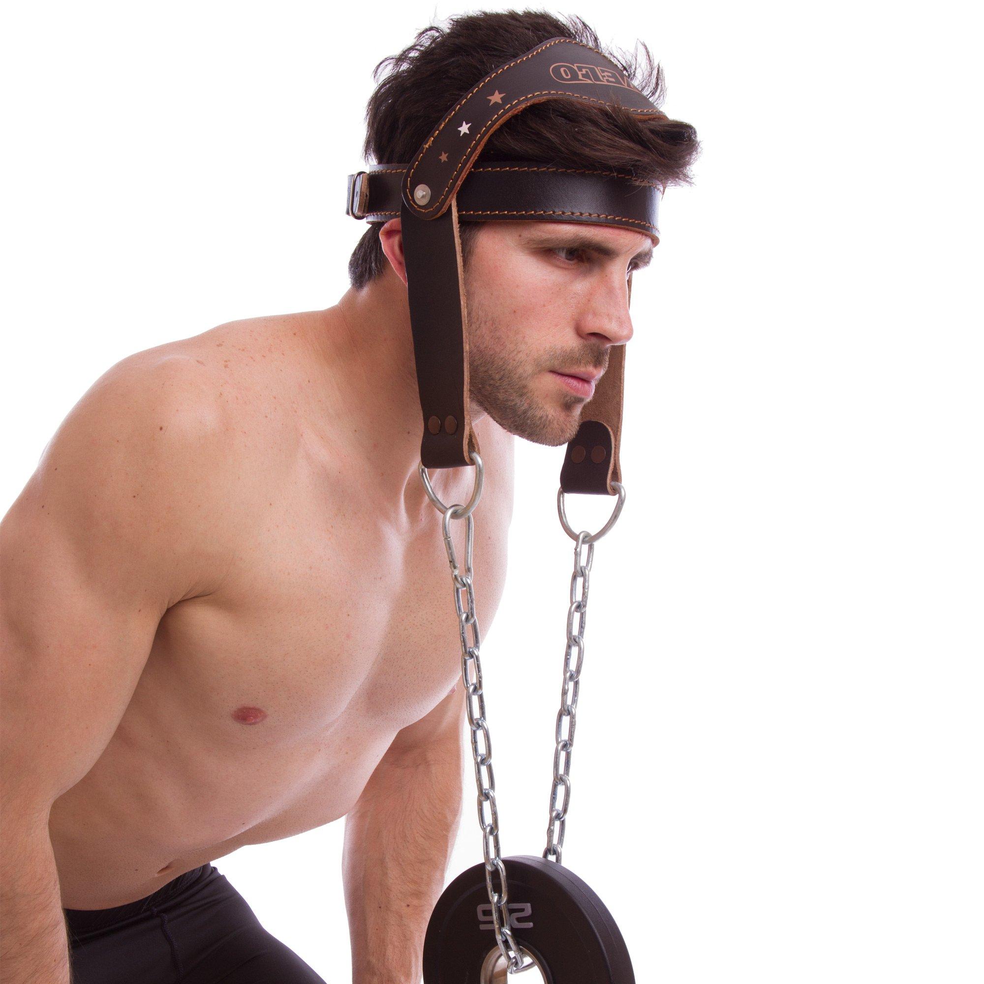 Упряжь для тренировок
