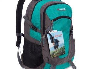 Рюкзак спортивный с жесткой спинкой Zelart (нейлон, р-р 50х33х16см, цвета в ассортименте) - Цвет Бирюзовый