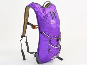 Рюкзак спортивный с жесткой спинкой (нейлон, р-р 29х9х45см, цвета в ассортименте ) - Цвет Фиолетовый